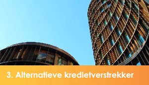 alternatieve kredietverstrekker